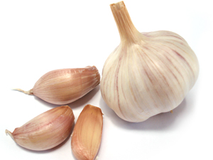 How to grow garlic in Western Australia WA Scene