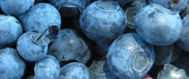 Blueberries Healthy Fruit Snack