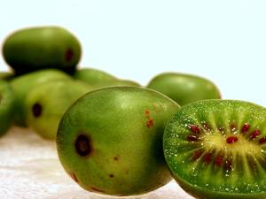 How to grow kiwi berries